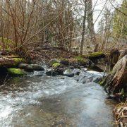 Bee Creek Waterfall