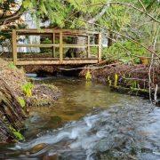 Bee Creek Flowing Under The Bridge