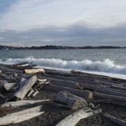 Waves Splashing Onto The Beach