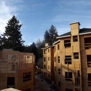 Dunsmuir Roof Sunny Afternoon