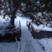 Snowy landing over Bee Creek