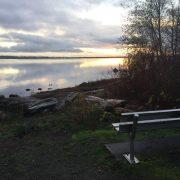 Bench overlooking The Lagoon